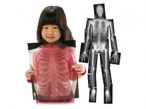 Rayos X de esqueleto humano